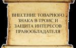Троис: таможенный реестр объектов интеллектуальной собственности
