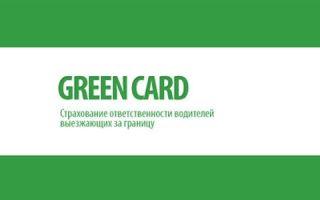 Как купить зеленую карту на автомобиль: стоимость