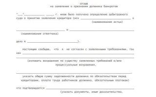 Банкротство юридических лиц: причины, особенности и как происходит процедура
