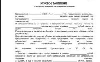 Установление отцовства в судебном порядке — статья 49 СК РФ: особенности и необходимые документы