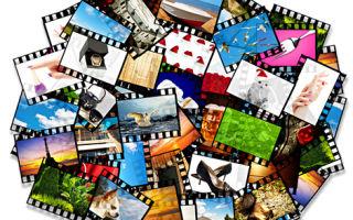 Авторские права на фотографии: как зарегистрировать и можно ли использовать
