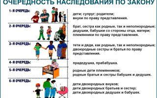 Налоги на наследство по завещанию и по закону в россии: за что платятся, размер и кто может не платить
