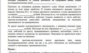 Жалоба на незаконные действия судебного пристава: права и обязанности, ответственность исполнителей