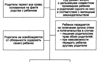 Запись родителей ребенка в книгу записей рождения: порядок и особенности процедуры