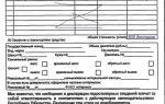 Пассажирская декларация: правила заполнения таможенного документа и способы подачи (бумажная и электронная версия)