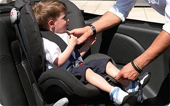 Ремни безопасности не пристегнуты: какой штраф