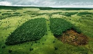 Экологическое лицензирование: суть понятия и виды деятельности по которым получают лицензию
