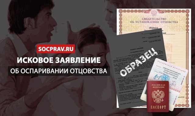 Заявление в суд об установлении отцовства: кто может подать, куда подается иск и его образец