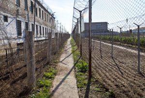Списки заключенных: как и где можно узнать сидит ли человек, в какой колонии России он находится и можно ли сделать это через интернет