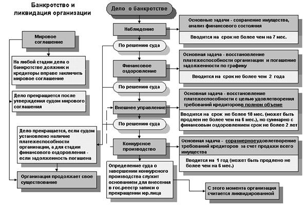 Конкурсное производство в процедуре банкротства: цели и порядок проведения