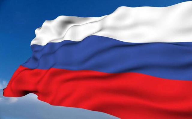 Таможня России: особенности службы, деятельность, таможенный портад