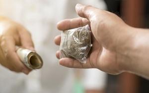 Новые потенциально опасные психоактивные вещества и наказание за их незаконный оборот по ст 234.1 УК РФ