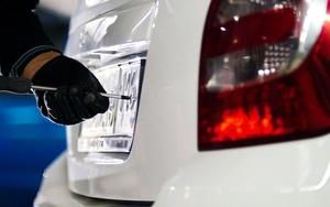 Кража гос номеров с автомобиля - статья 325.1 УК РФ: состав преступления и ответственность